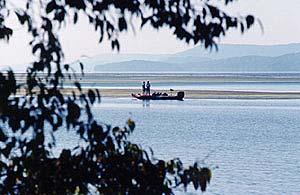 Guntersville lake of alabama for Lake guntersville fishing hot spots