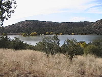 Parker canyon lake of arizona for Canyon lake fishing spots
