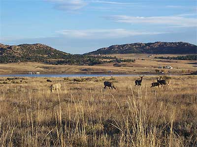 Deweese reservoir of colorado for Fishing spots in colorado springs