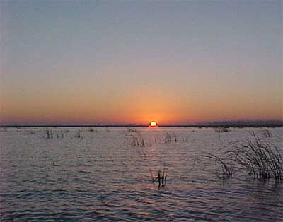 Lake Okeechobee Fishing Report on Lake Okeechobee Description 672 Words Are In This Fishing Spot