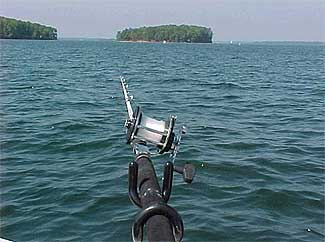 Lake murray of south carolina for Lake murray fishing report