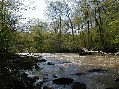 Gunpowder falls tailwater of maryland for Fishing spots in maryland