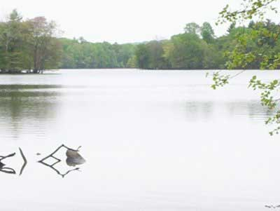 Loch raven reservoir of maryland for Fishing spots in maryland