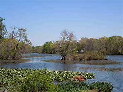 Urieville lake of maryland for Fishing spots in maryland