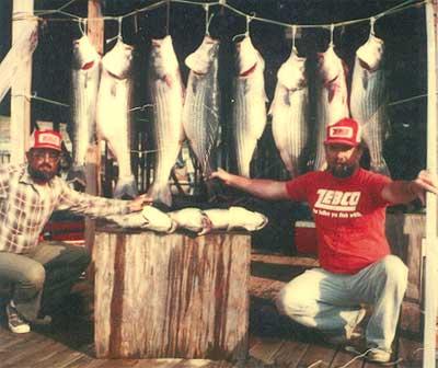 Bull shoals lake of missouri for Bull shoals fishing report