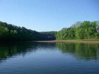 Lake taneycomo of missouri for Lake taneycomo fishing resorts