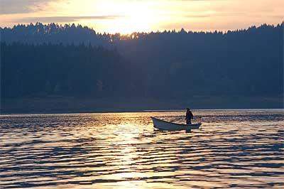 Henry hagg lake of oregon for Henry hagg lake fishing