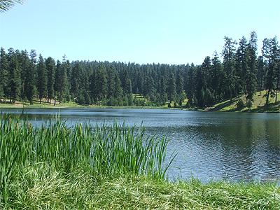 Walton Lake