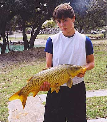 Medina lake of texas for Medina lake fishing