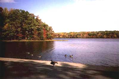 Burke lake of virginia for Burke lake fishing