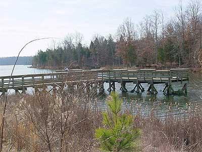 Sandy river reservoir of virginia for Sandy river fishing report