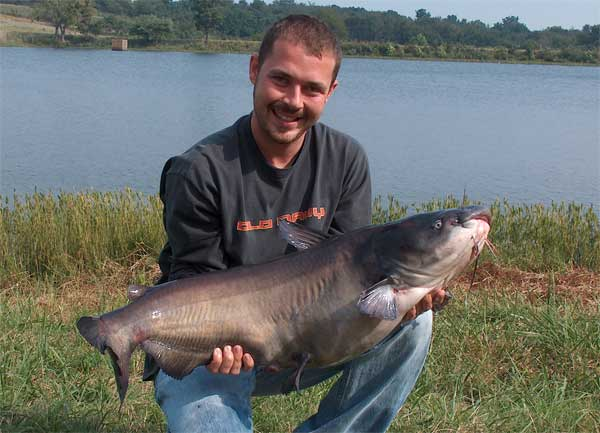 world record channel catfish fish World Record Blue Catfish Weight