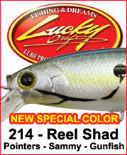 Lucky Craft Special Color: Real Shad