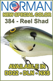 New Norman Color - 384 Real Shad