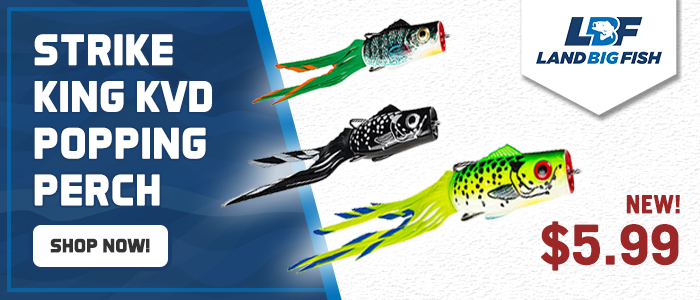 Strike-King-KVD-Popping-Perch-Sale-700x300.jpg