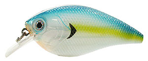 Xcite Baits XB-1 Square Bill Crankbait Sexy Blue Back Herring