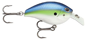 Storm Arashi Rattling Square Bill Crankbaits 612 - Hot Blue Shad
