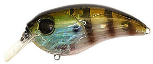Damiki Brute 70 Square Bill 034 - Blue Gill