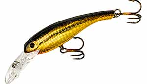 Cotton Cordell Wally Divers 340 - Golden Shiner