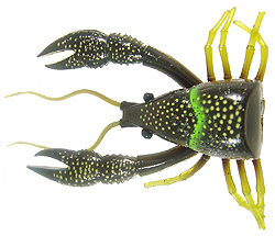 River2Sea Dahlberg Clackin' Crayfish 04 - Brown Olive - 90 Trailer Pack
