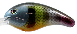 Strike King Pro-Model XD Crankbaits 651 - Neon Bluegill