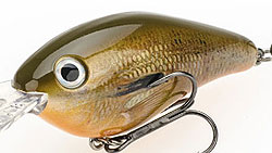 Strike King Pro-Model XD Crankbaits 697 - Orange Bream