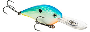 Strike King KVD 1.5 Flat Side Crankbait 534 - Citrus Shad