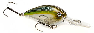 Strike King KVD 1.5 Flat Side Crankbait 585 - Sexy Ghost Minnow