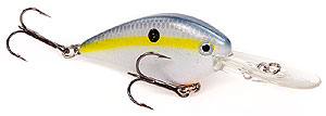 Strike King KVD 1.5 Flat Side Crankbait 590 - Sexy Shad