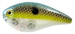 Strike King KVD Square Bill Crankbaits 500 Clear Sexy Shad