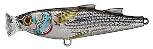 Koppers  Saltwater Series Mullet Popper 932 - Silver/Black