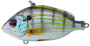 Koppers  Live Target Pinfish 01 - Natural/Matte