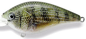 Baker Lures RGD Suspending Crankbait Series T007 - Perch