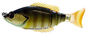 Vagabond Simson-5 Big Tail Green Gill