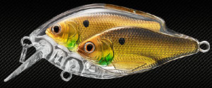 Koppers  Live Target Threadfin Shad Baitball Squarebill 814 - Gold/Black