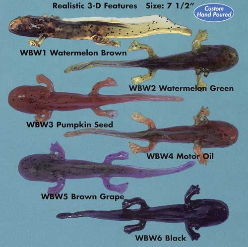 Any interest in live waterdogs page 2 bassfishin com for Water dog fish