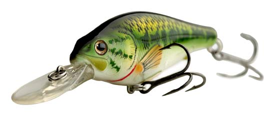 koppers-large-mouth
