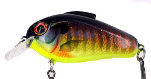 They are Here! Bill Lewis Echo 1.75 Crankbait