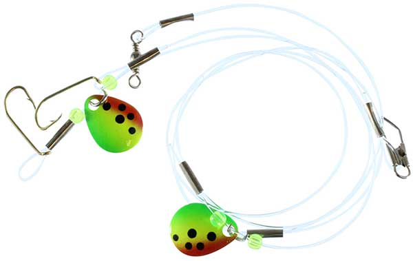 Catchmore Perch Rigs - NOW STOCKING