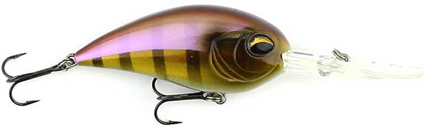 Jenko Fishing CD Series Deep Diving Crank Bait - MORE COLORS & SIZES