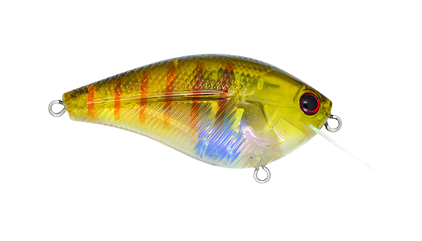 Livingston Lures Primetyme Square 2.0 - NEW COLORS!