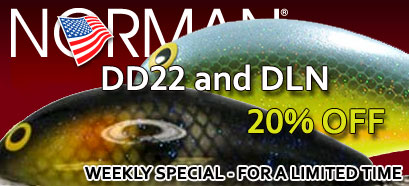 Weekly Special!!! 20% OFF Norman Lures DD22 and Deep Little N