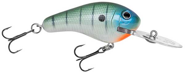 Bagley Rattlin' Diving Kill'r B - NOW IN STOCK
