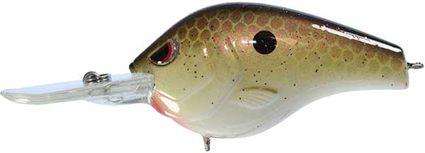 Spro Fat Papa Crankbait - MORE COLORS