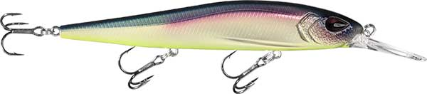 13 Fishing Whipper Snapper - NOW AVAILABLE