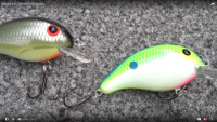 Bandit Lures 100 Series Crankbaits Video