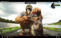 Biovex Hyper 7 Spinnerbait Video
