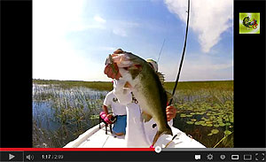 Gambler EZ Series Swimbaits Video