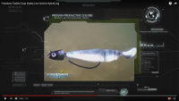 Video: Freedom Tackle Hydra Live Action Hybrid Swim Jighead