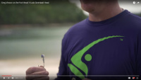 Fish Head V-Lock Swimbait Head Video